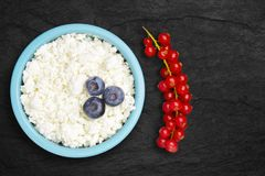 Fotografia ?wie?y naturalny cha?upa ser z czerwonym rodzynkiem i czarnymi jagodami w ceramicznym pucharze na czarnym kamienia tal obrazy royalty free
