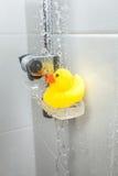 Fotografia żółta gumowa kaczka na mydlanym naczyniu przy prysznic Zdjęcie Royalty Free
