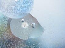 Fotografia abstrata Círculos Multi-colored Gota do petróleo imagem de stock royalty free
