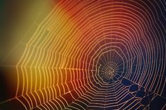 Fotografia abstrata da natureza da Web de aranha na luz solar com muitas cores imagem de stock royalty free