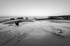 Fotografia in bianco e nero della spiaggia del Portogallo Immagini Stock Libere da Diritti