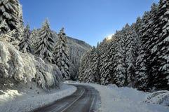 Fotografia bonita da paisagem do inverno fotografia de stock royalty free