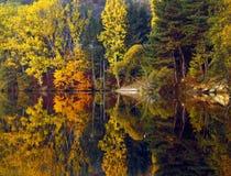 Fotografia bonita do outono foto de stock