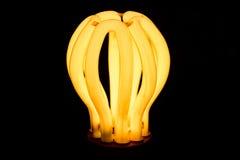 Fotografia clara de poupança de energia do fundo Fotos de Stock Royalty Free