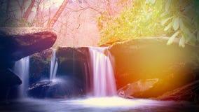 Fotografia colorida bonita da natureza de uma cachoeira na floresta fumarento das montanhas imagem de stock