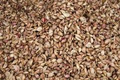 Fotografia completa do quadro de pilhas empilhadas dos cravos-da-índia de alho Foto de Stock Royalty Free