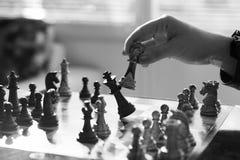 Fotografia conservada em estoque profissional do jogo de xadrez Imagem de Stock