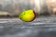 Fotografia crua verde do coco Fotografia de Stock