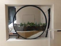 Fotografia da decoração interior, pintura, ainda vida, etc. Imagem de Stock Royalty Free