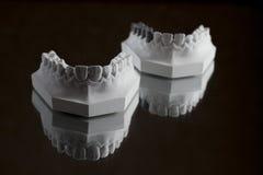Fotografia da maxila mais baixa em um fundo preto Imagem de Stock