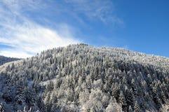 Fotografia da paisagem do inverno fotos de stock