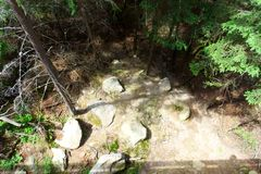 Fotografia del posto calmo nella foresta con le pietre Immagini Stock Libere da Diritti