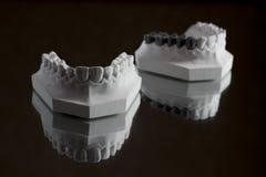 Fotografia della mandibola più bassa su un fondo nero Fotografie Stock