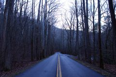 Fotografia della via di una strada vuota lunga nel legno nel parco nazionale di Great Smoky Mountains Immagini Stock