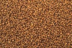 Fotografia di alta qualità di struttura del grano saraceno della farina di grano saraceno premio Fotografia Stock