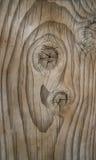 Fotografia di legno reale Fotografia Stock