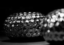 Fotografia di natura morta - in bianco e nero fotografie stock libere da diritti
