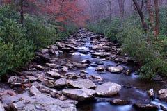 Fotografia di prospettiva di un fiume nel legno del parco nazionale di Great Smoky Mountains Immagini Stock Libere da Diritti