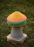 Fotografia do estoque do objeto dos materiais de treinamento do grilo Fotos de Stock