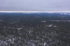 Fotografia do zangão da floresta do inverno imagem de stock