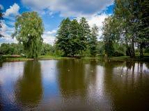 Fotografia do zangão do lago foto de stock royalty free