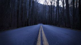 Fotografia escura e comprimindo da rua de uma estrada na floresta vazia imagens de stock royalty free