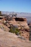Fotografia góry w Kolorado Zdjęcia Royalty Free