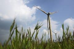Fotografia gigantyczny wiatraczek lokalizować w Satara zdjęcia royalty free