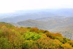 Fotografia jesienni widoki od above z morzem Zdjęcia Royalty Free