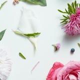 Fotografia kolaż dla kwiecistego projekta Obraz Royalty Free