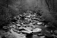 Fotografia lenta de Waterscape do obturador da perspectiva de um rio com o muitos com as pedras nas madeiras foto de stock