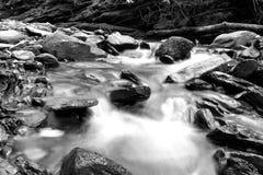 Fotografia lenta preto e branco da velocidade do obturador de um rio pequeno com as rochas musgosos na floresta fotografia de stock