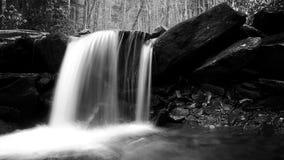 Fotografia lenta preto e branco de Waterscape do obturador de uma cachoeira com as pedras musgosos nas madeiras foto de stock royalty free