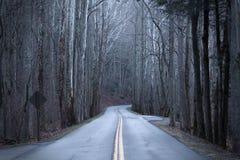 Fotografia longa da rua em Forest During Dusk e na queda profundos fotografia de stock