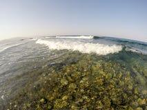 Fotografia morze macha na tle wschód słońca lub zmierzch obraz royalty free