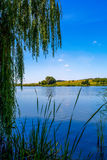 Fotografia natura wokoło pięknego błękitnego jeziora Obrazy Royalty Free