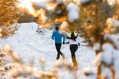 Fotografia od plecy bieg dwa atlety w zima parku obraz royalty free