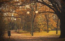 Fotografia piękno jesieni park Obrazy Royalty Free