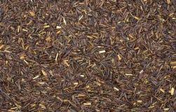 Fotografia piena della struttura dei gambi del tè Fotografie Stock Libere da Diritti