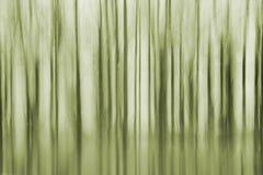 Drzewa abstrakcjonistyczni Fotografia Stock