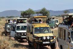 Fotografia safari z turystami w Serengeti Tanzania obrazy stock