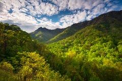 Fotografia scenica del paesaggio del parco nazionale di Great Smoky Mountains fotografia stock libera da diritti