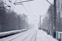 Fotografia stacja kolejowa w przedmieściach lub wsi Linia kolejowa biega między zwartymi rzędami drzewa Śnieżysty platf Obraz Stock