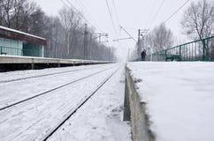 Fotografia stacja kolejowa w przedmieściach lub wsi Linia kolejowa biega między zwartymi rzędami drzewa Śnieżysty platf Zdjęcie Stock