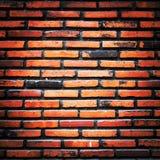 Stary ściana z cegieł Obraz Stock