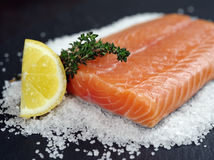 Surowy łososiowy stek Fotografia Royalty Free