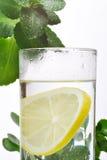 Fotografia szkło woda i cytryna w nim z niektóre zielonymi roślinami, biały odosobniony tło Fotografia Royalty Free