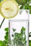 Fotografia szkło woda i cytryna w nim z niektóre zielonymi roślinami, biały odosobniony tło Zdjęcie Royalty Free