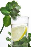 Fotografia szkło woda i cytryna w nim z niektóre zielonymi roślinami, biały odosobniony tło Zdjęcia Royalty Free