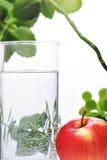 Fotografia szkło woda i jabłko w nim z niektóre zielonymi roślinami, biały odosobniony tło Obrazy Royalty Free